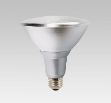 PAR38 LAMP
