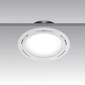CEDAR CIRCLE - Shoplight
