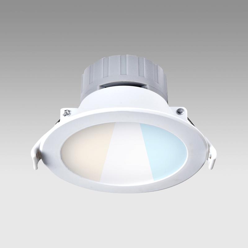 Home Lighting Down Lights Circuit On Rcd: VIVA Multi Fixed Downlights LED Downlights