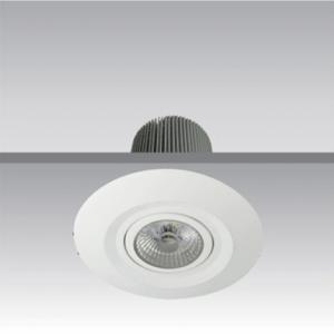 DETAIL 1 - led adjustable Downlight