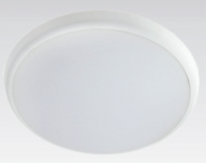 DISCUS - Surface outdoor oyster Light