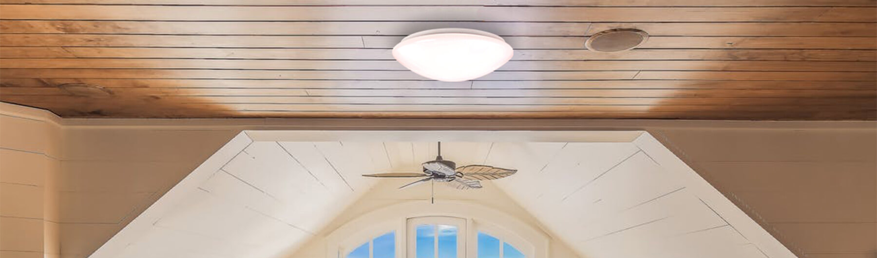 LED Oyster & LED Wall Lights