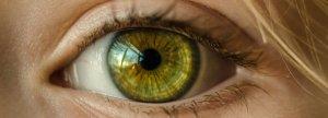 eye 1200 x 430